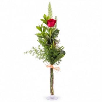Detalles de rosas