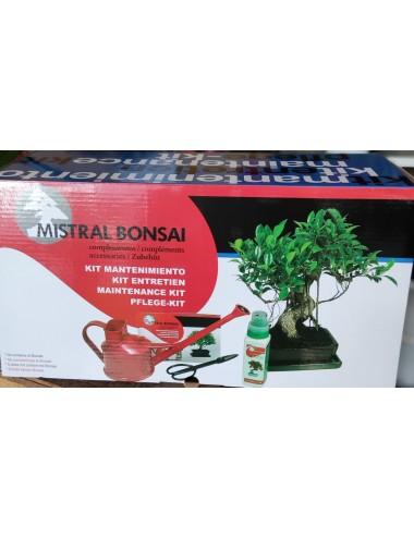 Kit de mantenimiento de bonsái